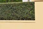 Agnes Decorative fencing 30