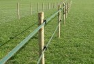 Agnes Electric fencing 4